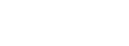 skipso-white-logo-big-1